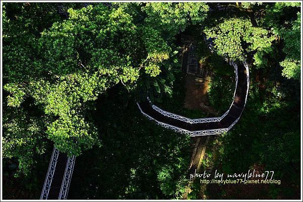 竹崎公園08.jpg
