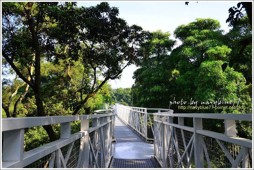 竹崎公園09.jpg