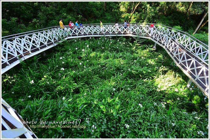 竹崎公園31.jpg