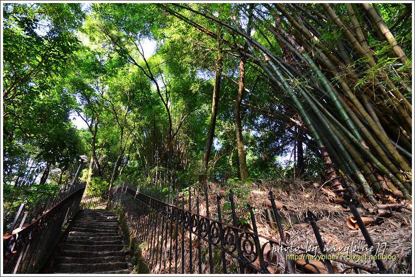 竹崎公園33.jpg