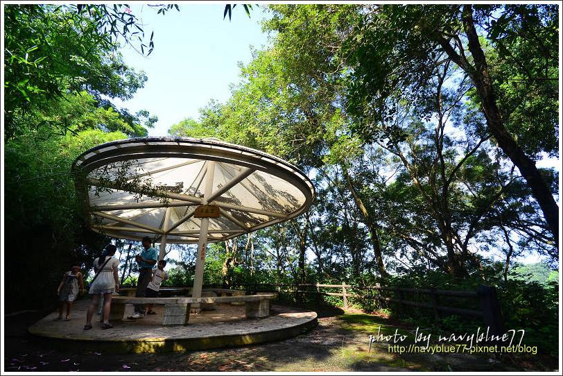 竹崎公園34.jpg