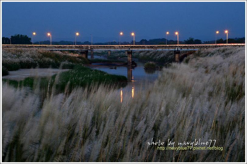 八掌溪橋07.JPG