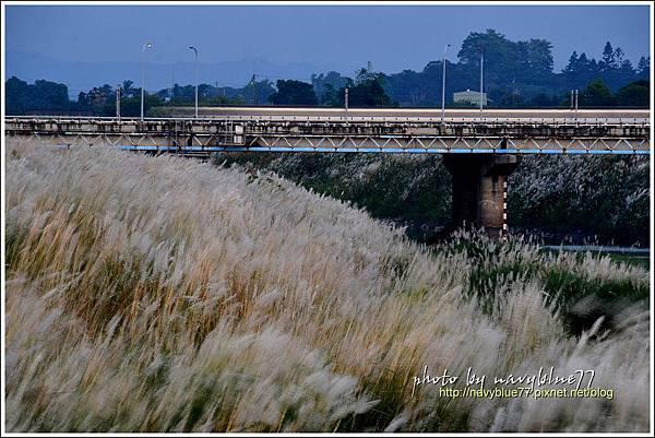 八掌溪橋14.JPG