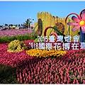 新社花海26.jpg