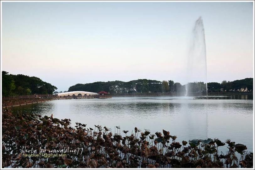 天鵝湖01.jpg
