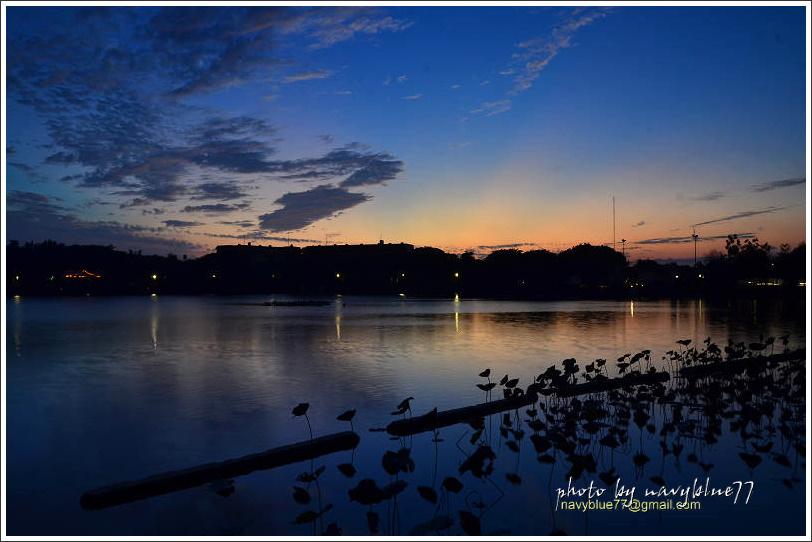 天鵝湖03.jpg