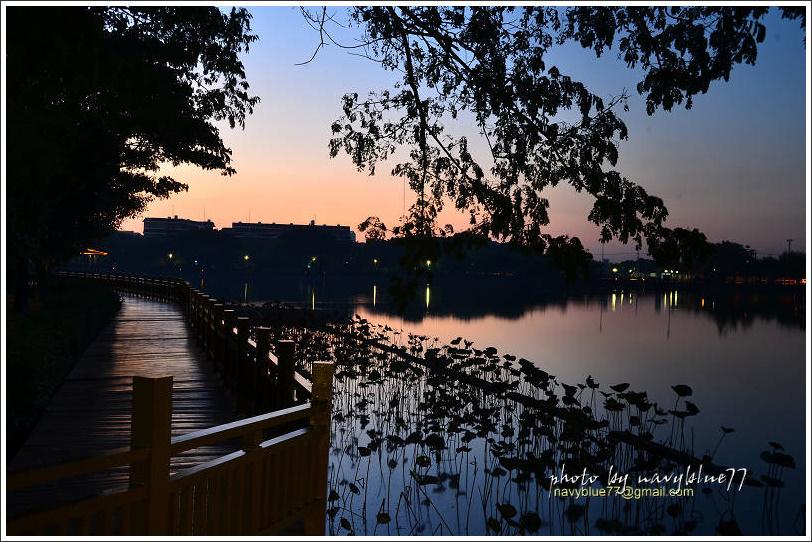 天鵝湖10.jpg