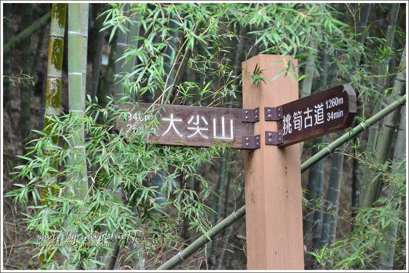 樟湖-大尖山18.jpg