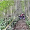 樟湖-大尖山24.jpg