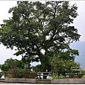 樟湖-大尖山39.jpg
