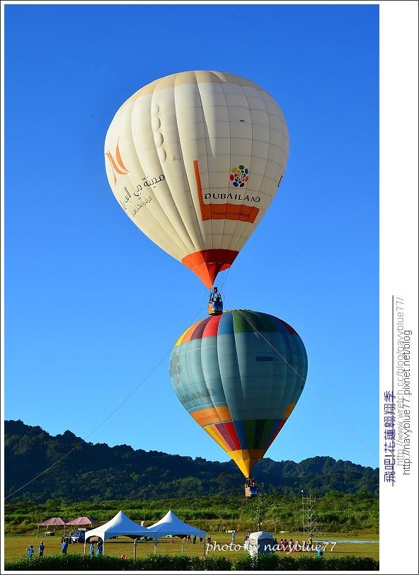fly2013-08.jpg
