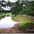 神祕湖步道08.jpg