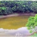 神祕湖步道13.jpg