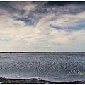 東石白水湖18.JPG