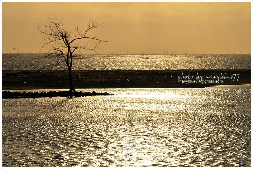 東石白水湖25.JPG