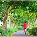 故宮南院朴子溪自行車道單車遊24.JPG