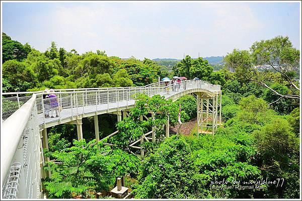 八卦山天空步道25.JPG