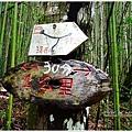司馬庫斯司立富瀑布12.JPG