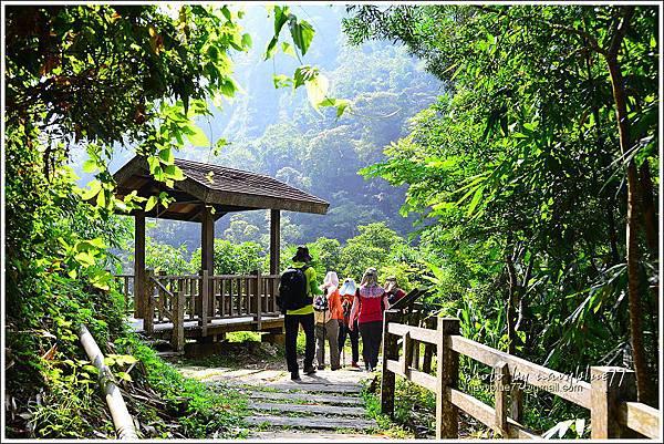 竹坑溪步道10.JPG