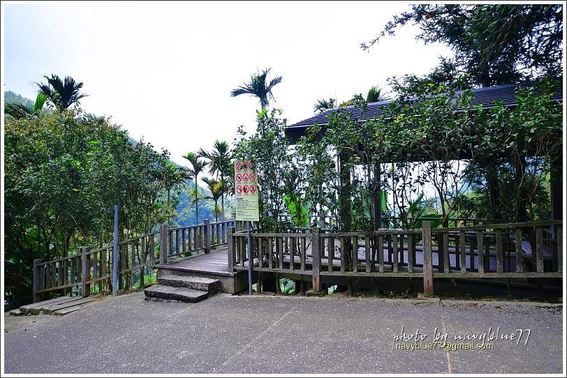竹坑溪步道45.JPG