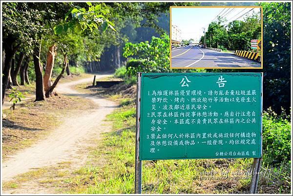 仁德虎山森林步道11.JPG