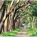 仁德虎山森林步道19.JPG