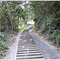 古坑桂林落羽松道-苦苓腳古道14.JPG