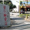 古坑桂林落羽松道-苦苓腳古道16.JPG