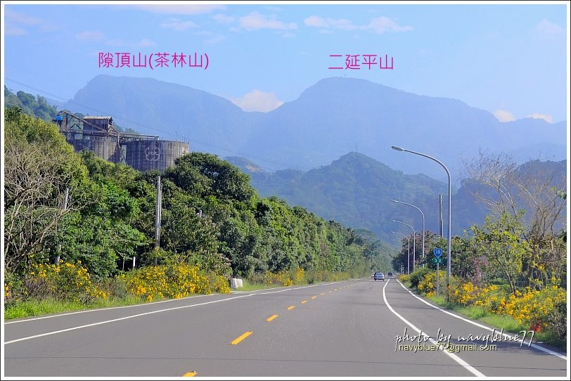 隙頂二延平步道-茶霧之道01.JPG