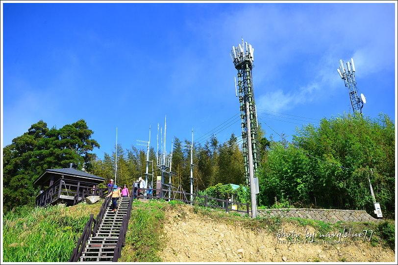 隙頂二延平步道-茶霧之道23.JPG