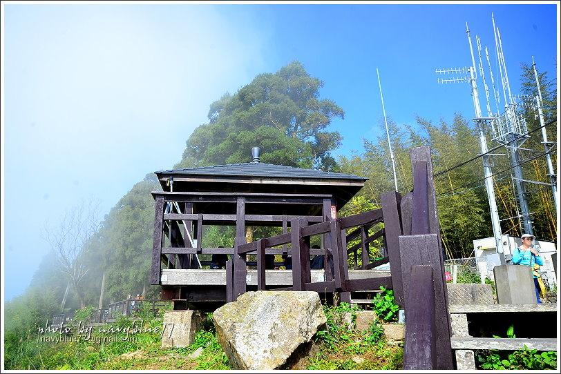 隙頂二延平步道-茶霧之道24.JPG
