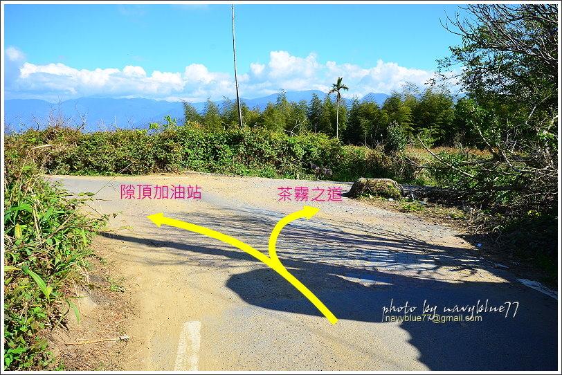 隙頂二延平步道-茶霧之道31.JPG