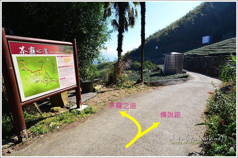 隙頂二延平步道-茶霧之道34.JPG