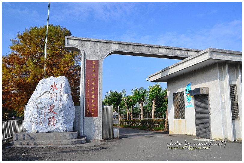 林內水利文物館浪漫落羽松18.JPG