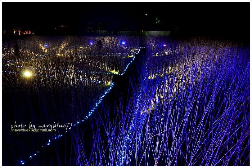 2017鹽水月津港燈節25.JPG