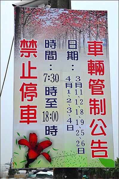 2017台南木棉花05.JPG