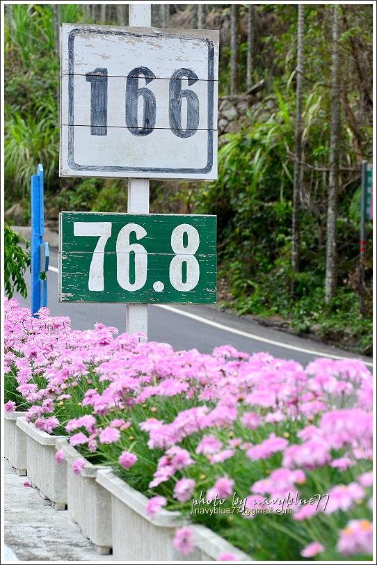 2017瑞里紫藤花季47.JPG