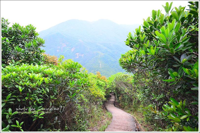 香港衛奕信徑赤柱至陽明山莊19.JPG