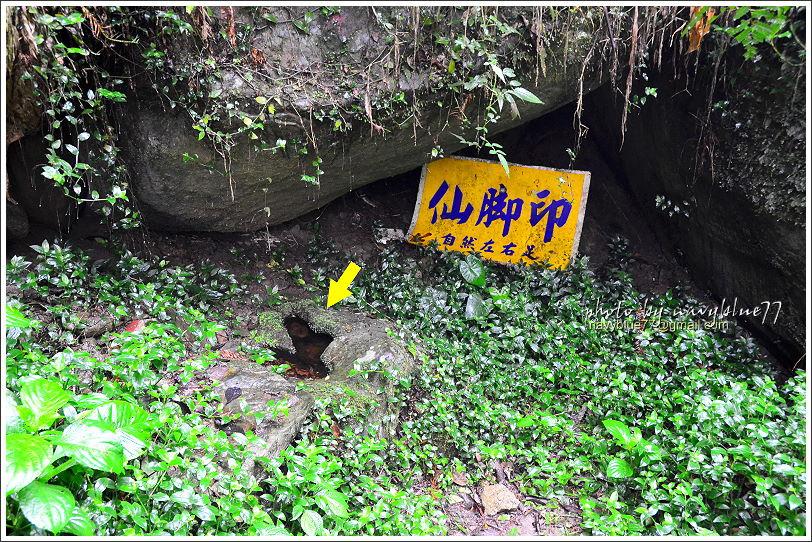 嘉義梅山太平仙人堀步道11.JPG