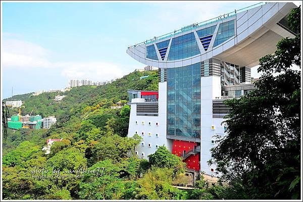 香港太平山頂環迴步行徑04