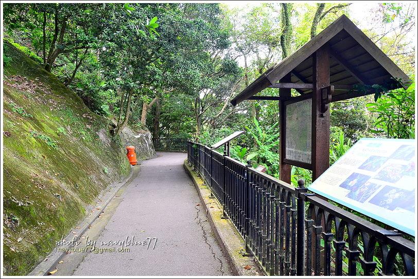 香港太平山頂環迴步行徑05