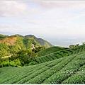 太平風景區景點 (8).JPG