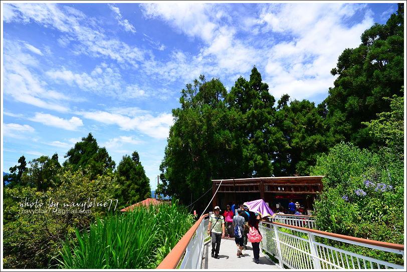 清境高空觀景步道05.JPG
