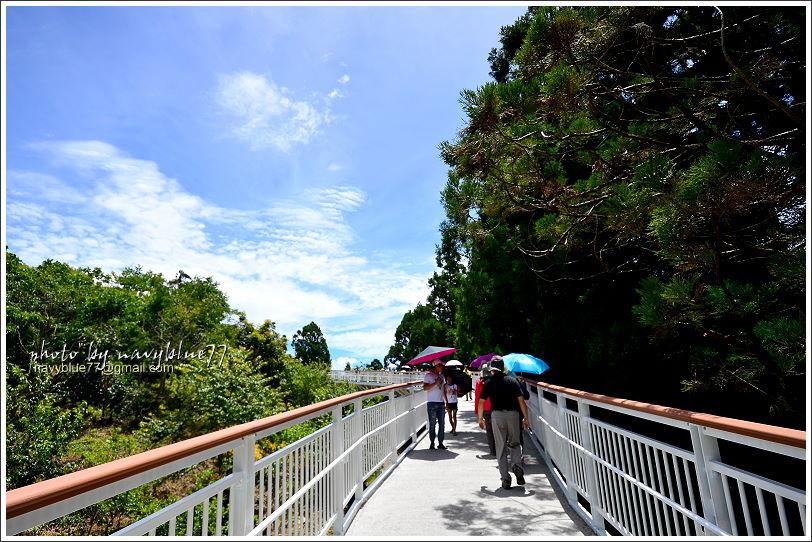 清境高空觀景步道06.JPG