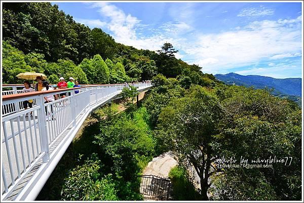 清境高空觀景步道08.JPG