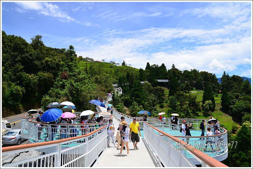 清境高空觀景步道15.JPG