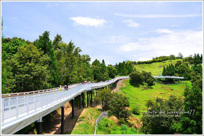 清境高空觀景步道21.JPG