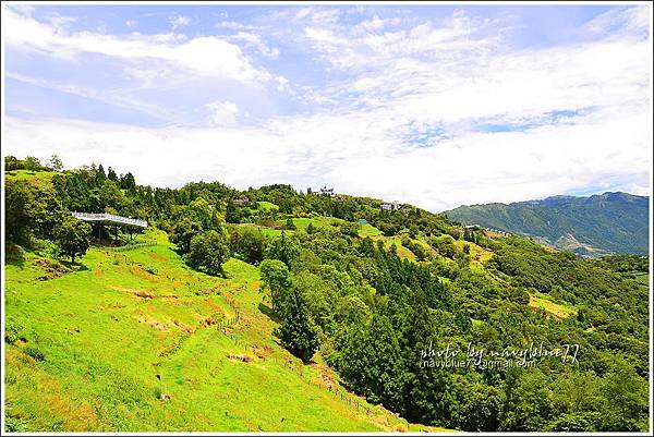 清境高空觀景步道22.JPG