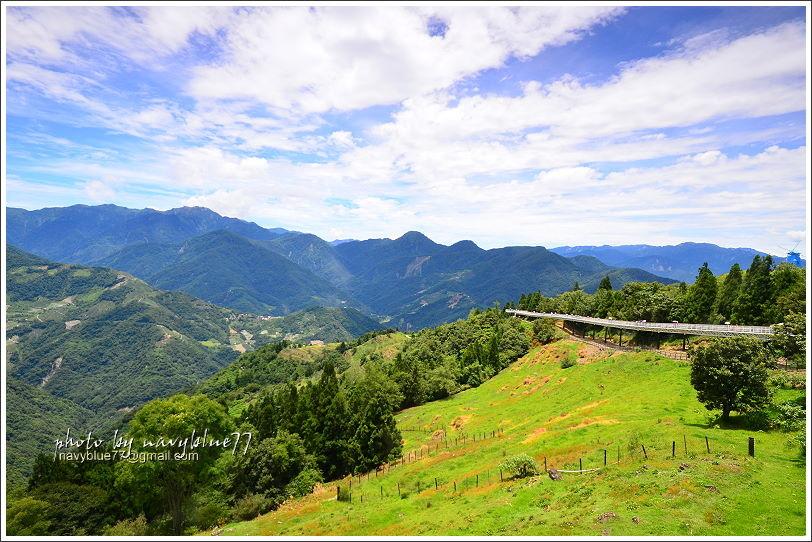 清境高空觀景步道25.JPG