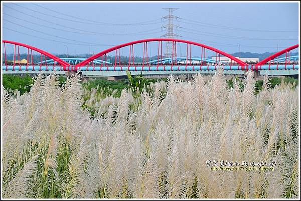 曾文溪渡槽橋04.JPG